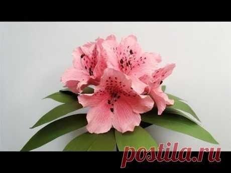 (5441) ABC TV | Как сделать бумажные цветы из гофрированной бумаги Азалии - Craft Tutorial - YouTube