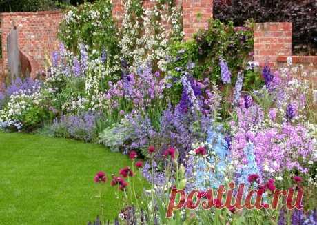 Две клумбы непрерывного цветения — 6 соток
