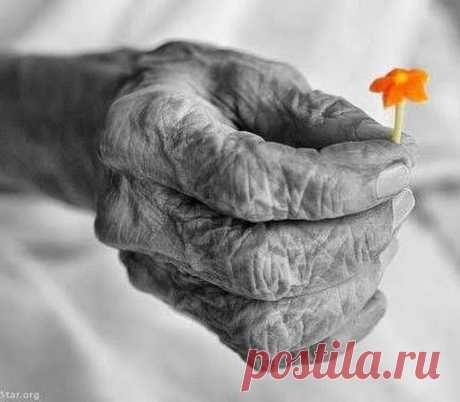 Старость — это удержание крышки в наполненном до краев сосуде.