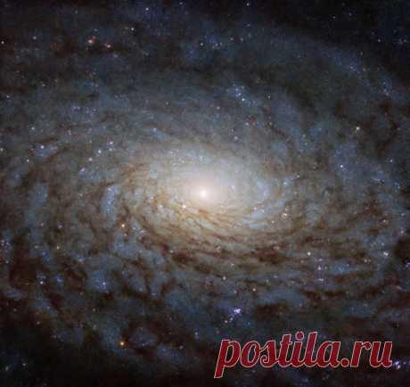 Эта космическая красота, снятая нашим любимым «Хабблом», – спиральная галактика, находящаяся в созвездии Девы. Подробнее о том, что это такое, можно почитать здесь: