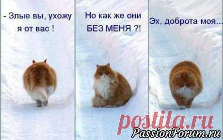 Улыбнитесь скорее!)))))))