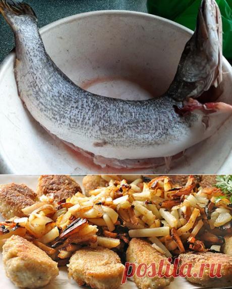 Ирина Кушнир - Вы когда последний раз ели котлеты из щуки?