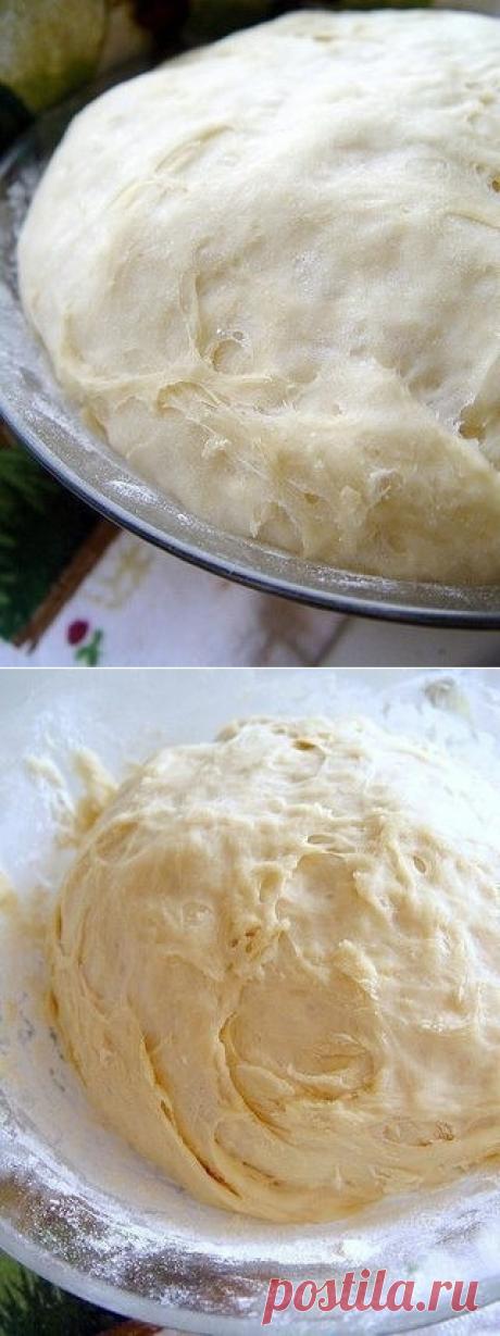 Как приготовить дрожжевое тесто для начинающих. - рецепт, ингридиенты и фотографии