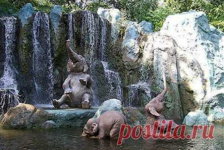 вот отсюда и выражение: Доволен как слон, а вернее как слон после купания.)))