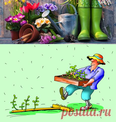 Работы в саду в мае: 5 важных дел на участке в майские праздники