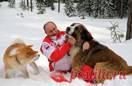 Президент России и его собаки