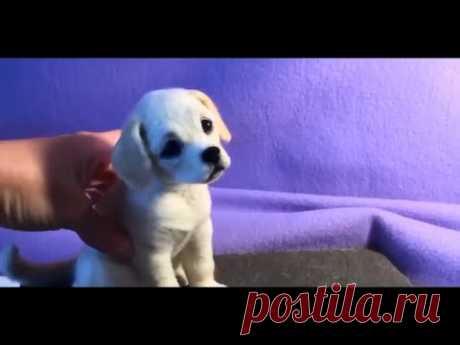 Валяная собачка,сухое валяние/Felting dog, dry felting