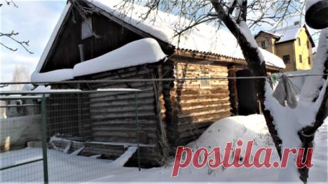 Начались первые сильные морозы 20 -28 градусов. Тепло ли курам в курятнике ? | Хозяйство Воронова | Яндекс Дзен