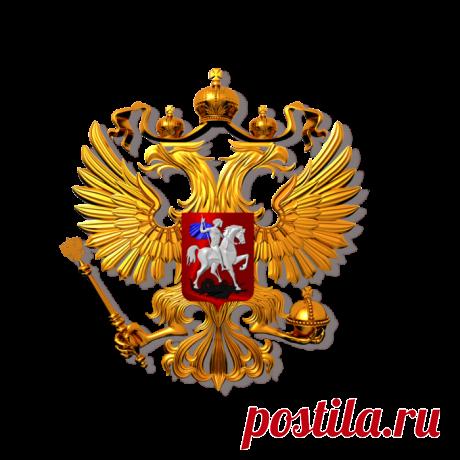 Защита прав граждан в полиции по Москве - Электронная приемная граждан
