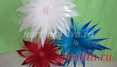 Цветы из лент «Флаг РОССИИ» |