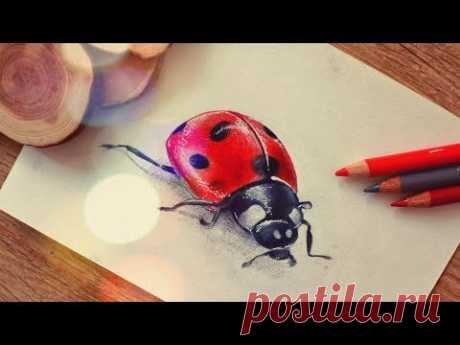 Почти 3D АРТ :)) Как нарисовать Божью Коровку ♡ Урок рисования цветными карандашами | Katerina Rise