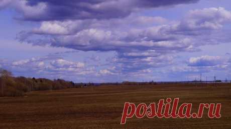 осенью вид из окна на поле