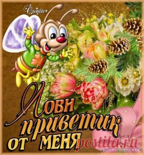 Открытка Лови Приветик от Меня. - анимационные картинки и gif открытки. #открытка #открытки #приветик #привет
