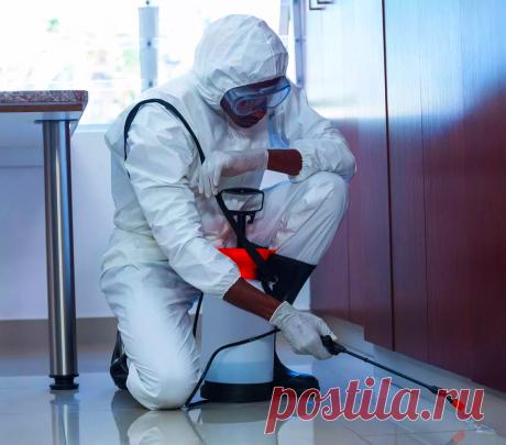 Что нужно дезинфицировать в первую очередь во время пандемии | Безумный Доктор | Яндекс Дзен