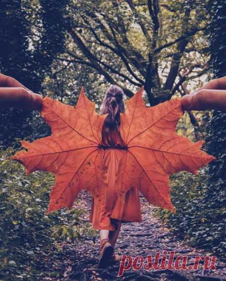 Осенний какангел