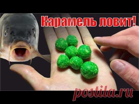 Карп сходит с ума от КАРАМЕЛЬНОЙ приманки - YouTube