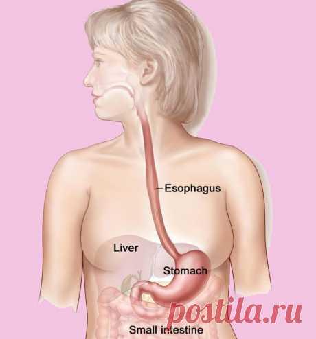 Причины появления непривычного привкуса во рту / Будьте здоровы