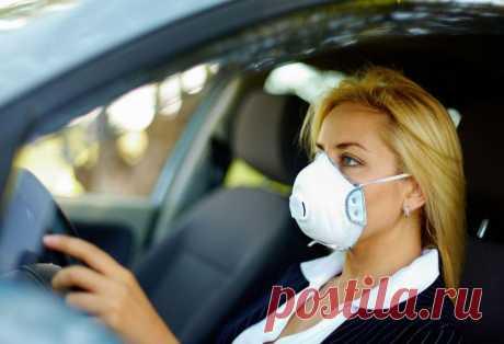 Безопасность во время пандемии: 5 советов для водителей и пассажиров авто