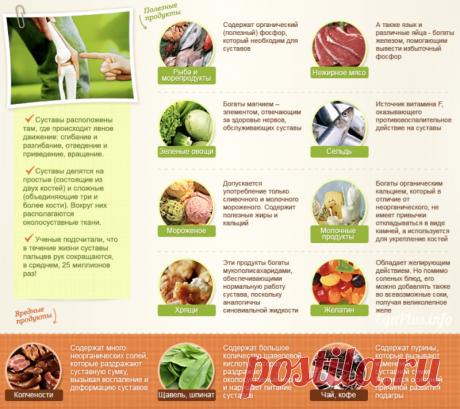 Чем кормить суставы: лучшие продукты и ключевые микроэлементы