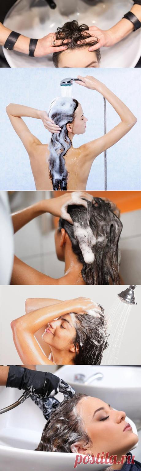 Как правильно мыть голову в домашних условиях: советы и секреты профессионалов | Тысяча и одна идея