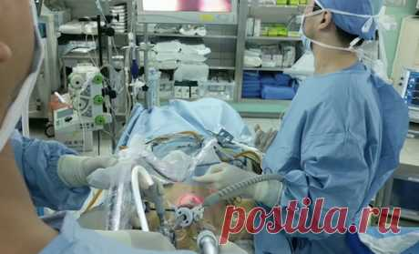 Уменьшение желудка без операции Endozip. Ушивание желудка за рубежом без операции. Бариатрическая трансоральная эндоскопия без разрезов и лечение ожирения в Израиле