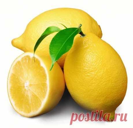 Как и почему нужно использовать весь лимон без отходов? — Мегаздоров