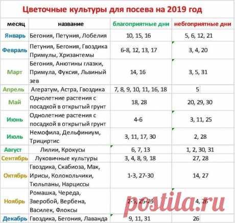 календарь для цветочных культур 2019г