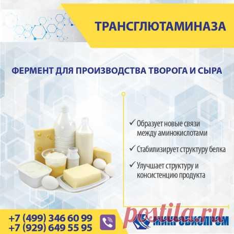 Трансглютаминаза (ТГ) - фермент, органический катализатор химических реакций, связывает белковые молекулы, образуя новые связи между аминокислотами, тем самым стабилизируя структуру белка. Фермент трансглютаминаза для молочных продуктов способен связывать между собой сывороточные белки в единую сеть и не позволяет им распадаться. Трансглютаминазу рекомендуется использовать в молочной промышленности при производстве йогуртов, кефира, простокваши, творога, сыров, сметаны, мороженого.