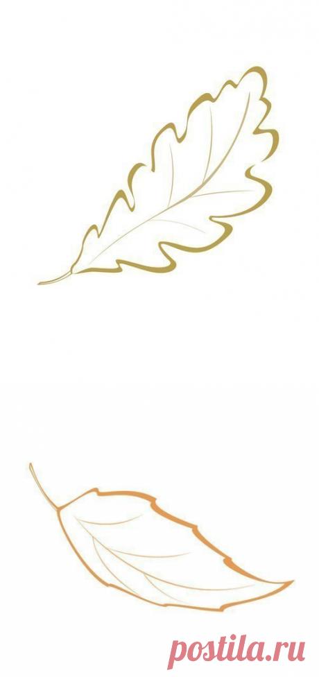 Красивые шаблоны осенних листьев для творчества(продолжение) — Поделки с детьми
