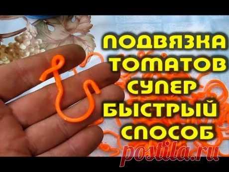 Подвязка томатов супер быстрый способ - YouTube