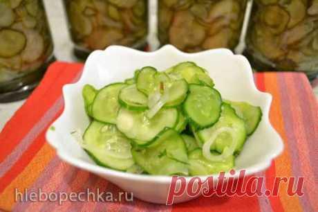 Огурчики салатные, закусочные, нежинские - ХЛЕБОПЕЧКА.РУ - рецепты, отзывы, инструкции, обзоры