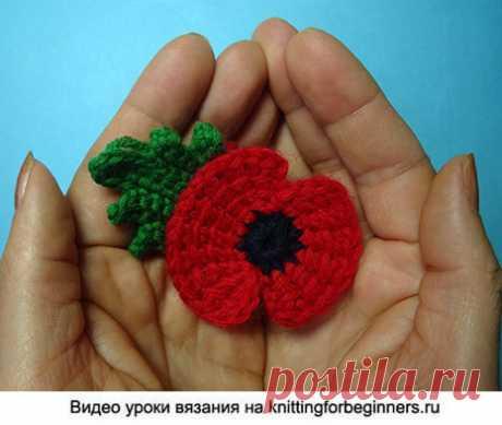 Начинаем вязать – Видео уроки вязания » Памяти павших в Первой Мировой Войне – Тунисский мак