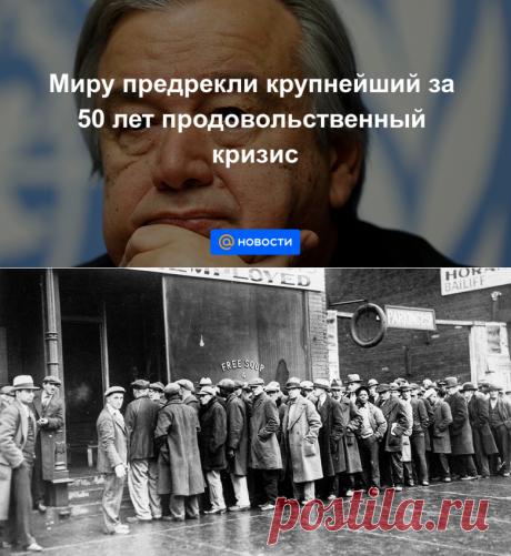 Миру предрекли крупнейший за 50 лет продовольственный кризис - Новости Mail.ru