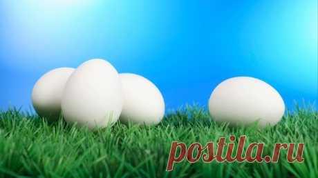 Видео: как быстро почистить горячее яйцо— неожиданно простой лайфхак Чтобы легко ибыстро очистить горячее яйцо отскорлупы, ненужно обладать сверхспособностями. Достаточно следовать простому иполезному совету.