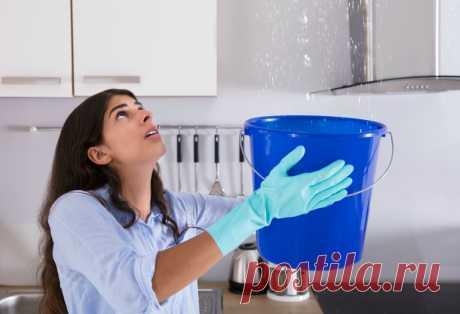 (2) Что делать, когда затопили соседи. Пошаговая инструкция