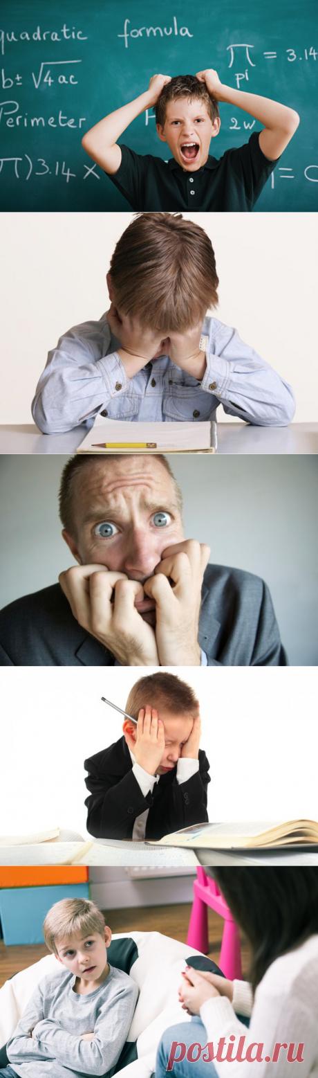 Софофобия (боязнь учиться): причины появления, симптомы недуга и способы лечения