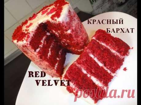 Very tasty cake Red Velvet. Red Velvet.