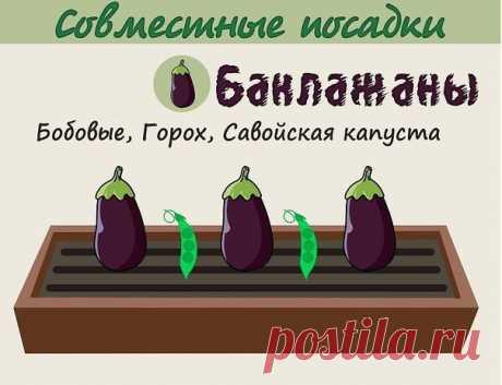 nqIKspPQZqw.jpg (604×464)