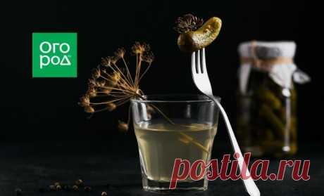 Почему мутнеет рассол в огурцах и что делать | Дачная кухня (Огород.ru)