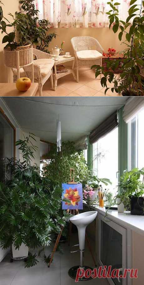 (+1) тема - Оранжерея в гостиной      советы