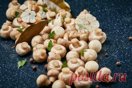 Los champiñones marinados - la receta - como preparar - los ingredientes, la composición, el tiempo de la preparación - la Dama Mail.Ru