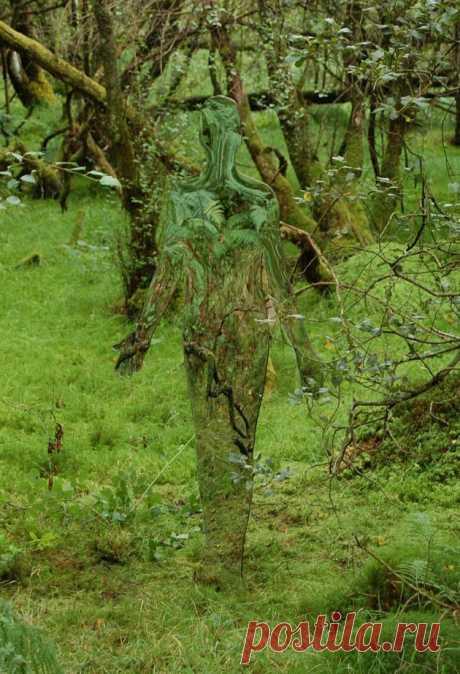 Увидеть и пережить: покорившие мир скульптуры-призраки, расставленные в лесу Шотландии
