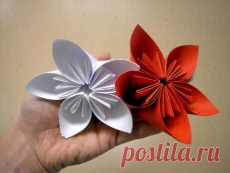 Origami Blumen für Anfänger - Origami Blumen für Anfänger