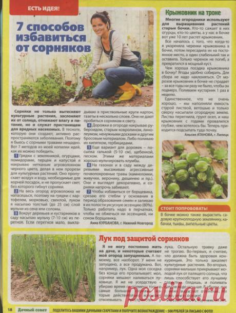 «Дачный совет» - верный помощник для садоводов и огородников в самый разгар дачных работ.
