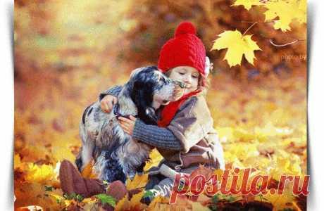 Вот бы счастье  смешать бы с радостью,  Звёзд рассыпать с пути бы  млечного,  Да заправить ванильной  сладостью,  Подливая тепла сердечного...  Высших чувств золотое крошево,  Да, любви места заповедные.  Всё, что есть на земле  хорошего -  По охапке рукою щедрою...  Капнуть солнца, с луча  рассветного,  Вперемешку с осенней  свежестью.  Влить в сосуд все оттенки  светлого,  В пену взбить разбавляя нежностью.  И в преддверии дня  погожего,  Когда в лучшее, всё же  верится,...