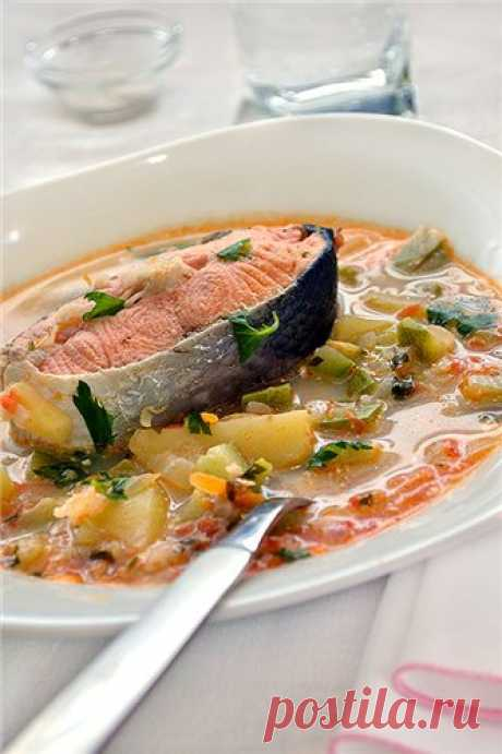Salmon and vegetable marrows soup Gentle, tasty and very useful soup. Useful to those that except a remarkable vegetable marrow (which promotes digestion) there is also a salmon who is simply necessary for an organism. Because in a salmon as well as to contain in a salmon, a trout, herring, a mackerel, a sardine very useful fats. Soup quickly is cooked …