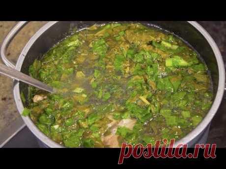 Как варить зеленый борщ с щавелем. Суп со щавелем видео рецепт от Тани