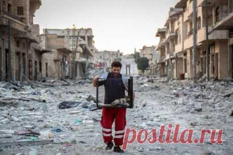 «Человек-кот из Алеппо» продолжает спасать бездомных животных . Тут забавно !!!
