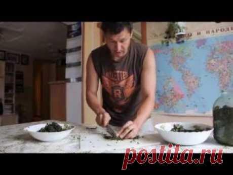 Источник: www.ekush.ru Процесс ферментации закончен. Резка и подготовка к сушке.