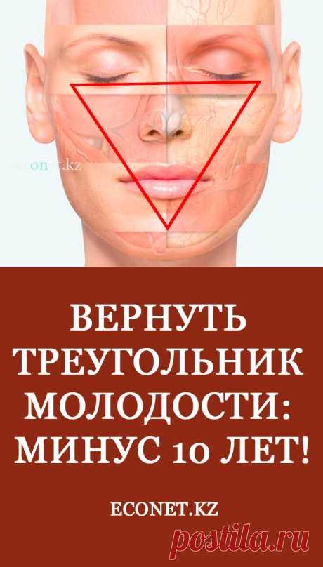 Вернуть треугольник молодости: минус 10 лет!  Неважно, какую природную форму имеет лицо, в нем всегда будет четко просматриваться треугольник. Если дно треугольника – линия лба, то даже появившиеся ранние морщинки и заломы не смогут его испортить, лицо будет выглядеть визуально намного моложе. А вот если донышко приходится на нижнюю часть, вследствие естественных природных изменений, то перевернутый треугольник прибавит добрый десяток лет, даже, если кожа будет ухоженная и морщинки сглажены.
